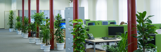 Banner_office